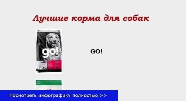 Корм для собак купить