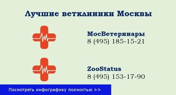 Москва ветеринарная клиника