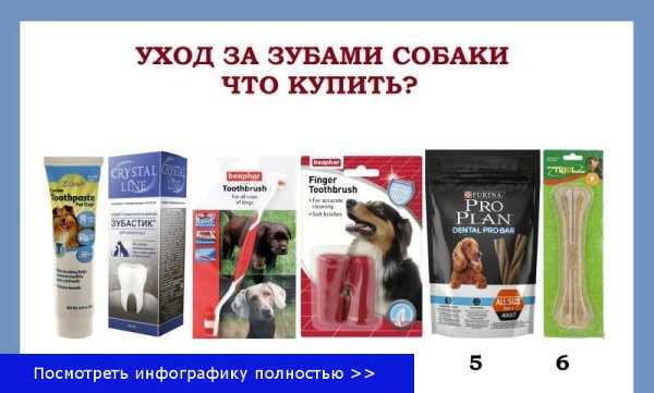 Средства для зубов собаке