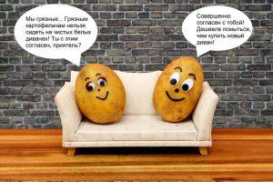 Мудрость от друзей-картофелин