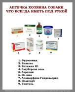 Aptechka-hozyaina-sobaki-1.jpg