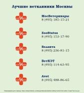 Luchshie-vetkliniki-Moskvy-1.jpg
