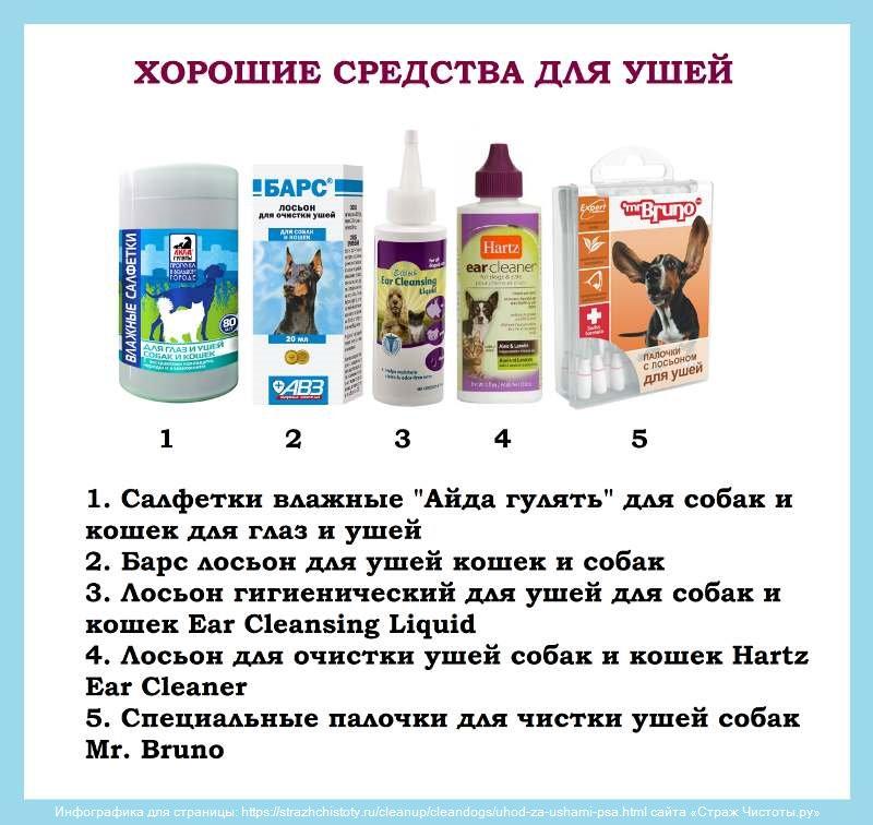 Чем чистить уши собаке