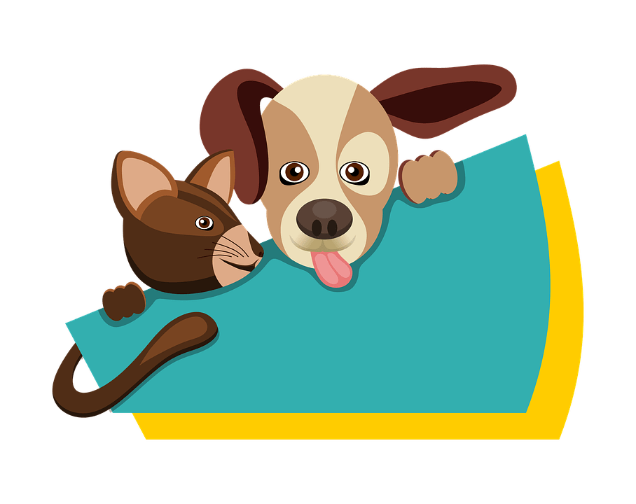 Рвота и тремор у собак